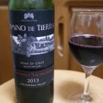 【安旨ワイン】カミノ・ディ・ティエラ カベルネ・ソーヴィニヨン 求めていた味に一歩近づいたぜ!