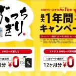 【格安SIM】ぶっちぎり FREETEL1年間¥0キャンペーン 1GBまで無料!